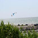 Para-Sailing on Lake Erie by DVnJD
