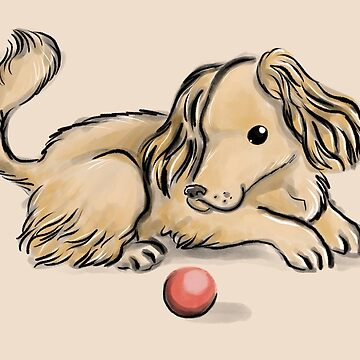 Coker spaniel playing with a ball by Extreme-Fantasy