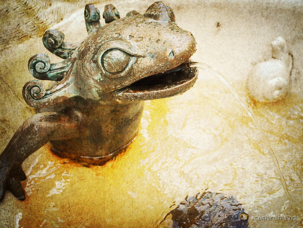 Frog Fountain by camerainhand