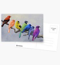 Vögel aller Farben Postkarten