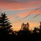Red Sky at Night by DVnJD