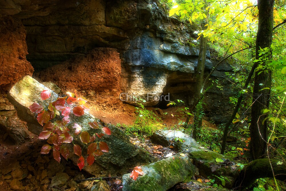 Fall Caves by Chip  Ford