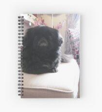 Day 63 Spiral Notebook