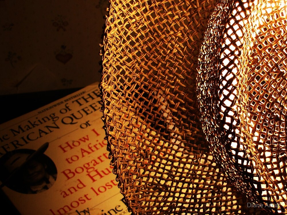 Lamp Shade Series #2.....Reading Kathrine by Diane Arndt