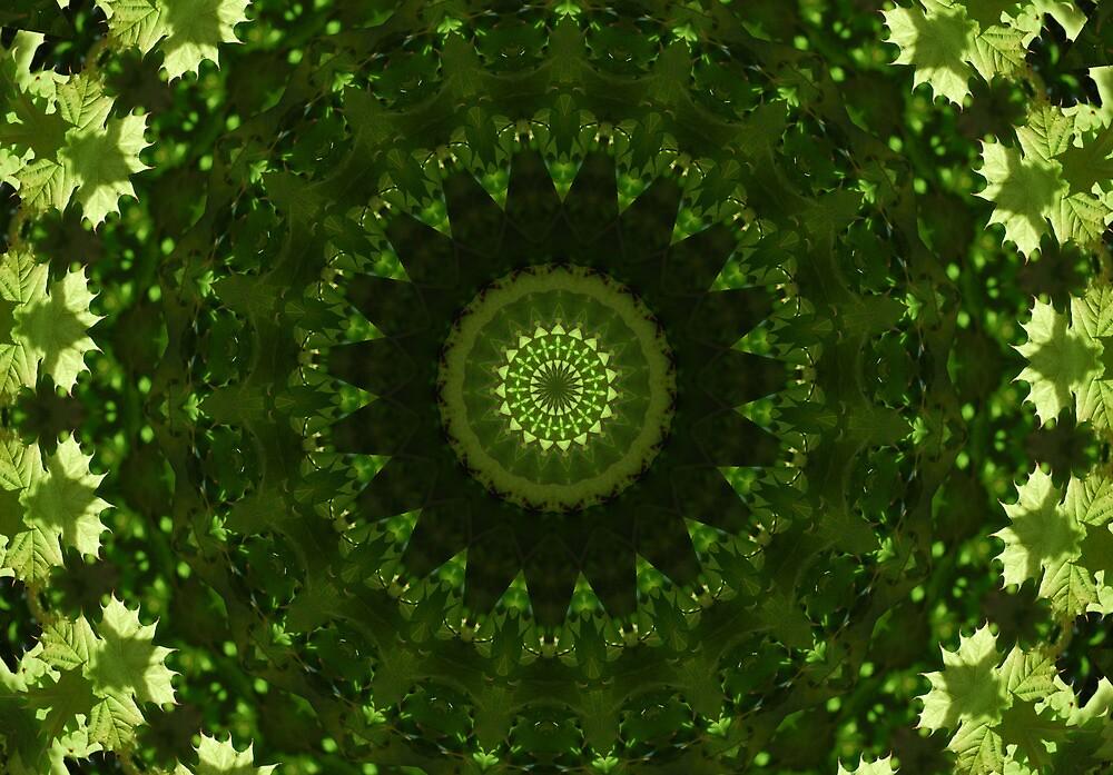 green leaves by Heike Nagel