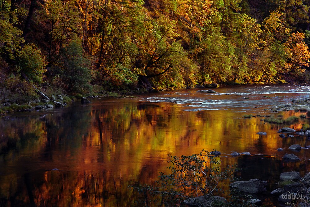 Fall Reflections on the North Umpqua by tday01