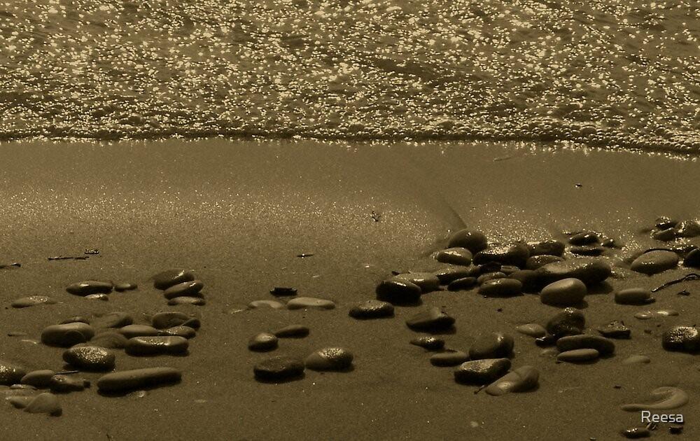 Stone Beach by Reesa