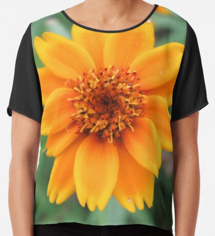 wundervolle orange Blume, Ringelblume, Natur Chiffontop