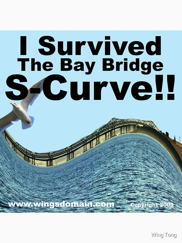 I Survived the Bay Bridge S-Curve!! by wingtong168