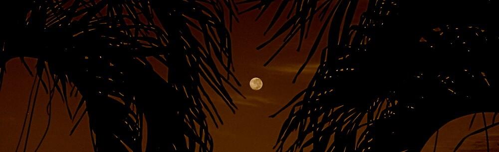 sepia moon by alineB