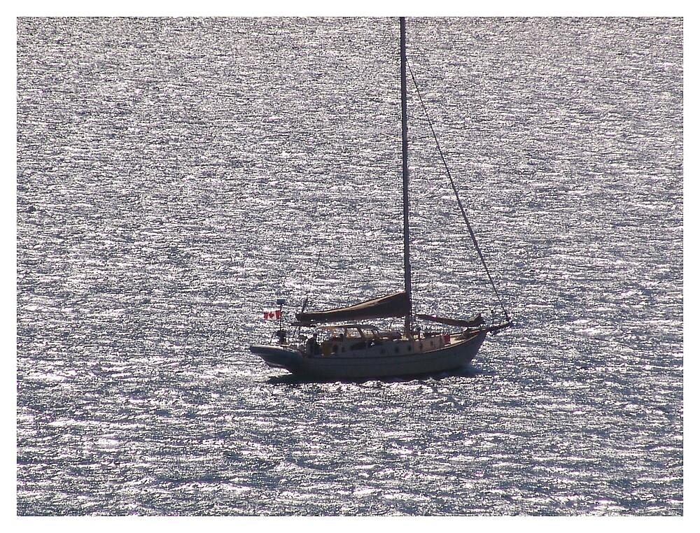 Ship at Sea by bsfgadv