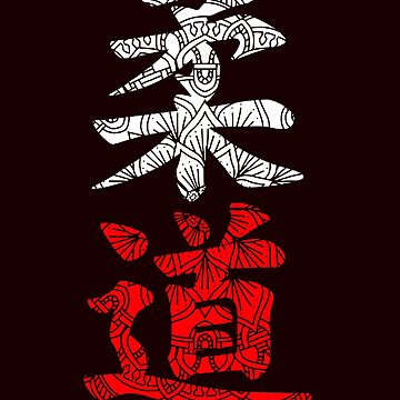 Chinese lettering judo by schnibschnab