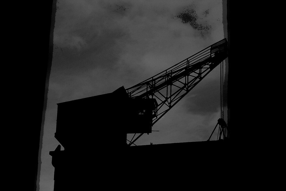Crane on the roof by stephanehuon