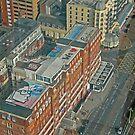 Brighton Rooftops by RedHillDigital