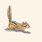 Curious Chipmunk by Dan Tabata