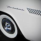 Ford Thunderbird by Sherry  Graddy