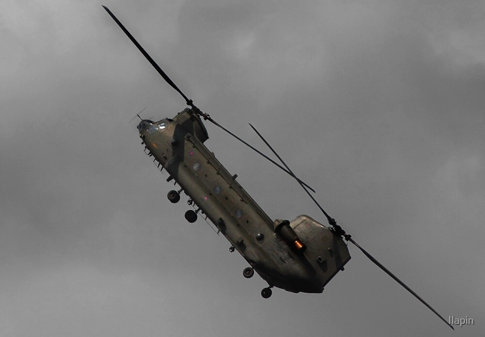 the amazing chinook by Ilapin