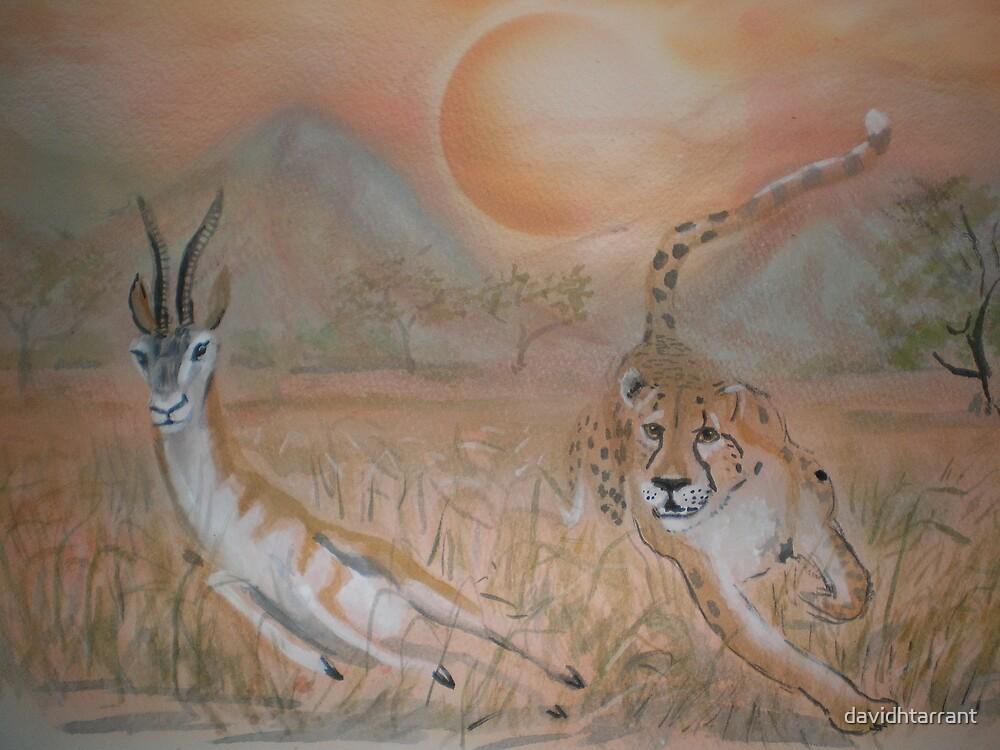 hunting  by davidhtarrant