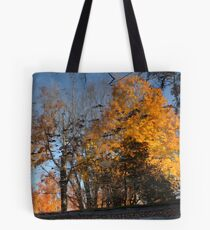 Reflections In A Pond 8422 Tote Bag