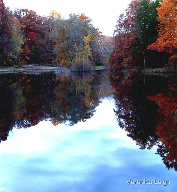 Fall Scene by Veronica Schultz