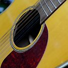 Guitar close-up by Asiantiger247