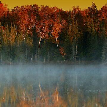 Fall Foliage by locustgirl