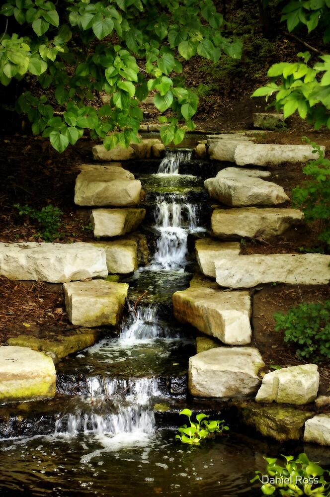 Waterfall in a Garden by Daniel Ross