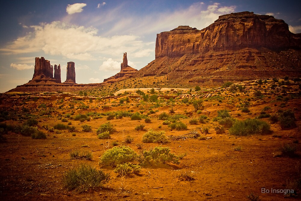 Monument Valley The Wild West by Bo Insogna