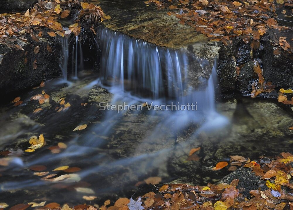 Shenandoah Stream Detail by Stephen Vecchiotti