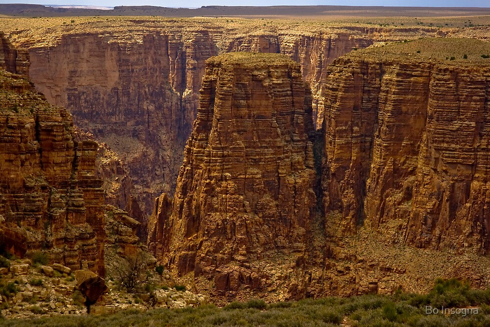 Beginning of the Grand Canyon by Bo Insogna