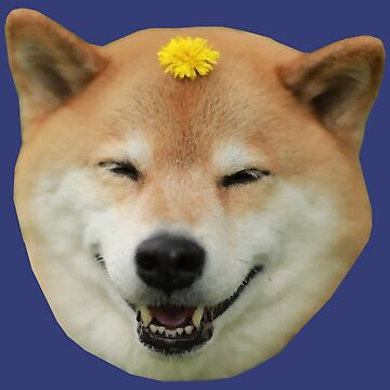 Shiba Inu Dog Smiling Flower by desexperiencia