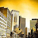 Winnipeg by Gary Paakkonen