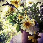 Daisies by the Window by Barbara Wyeth