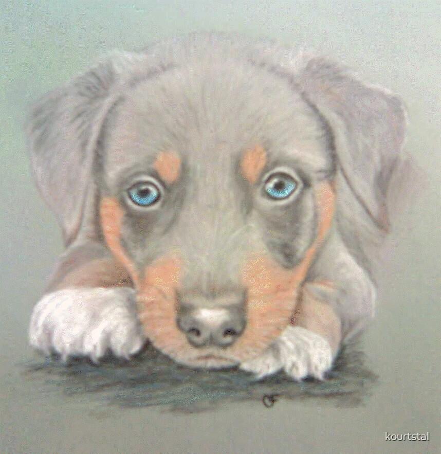 Crissy's Puppy by kourtstal