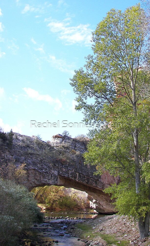 The ups and downs of having a Natural Bridge. . .  by Rachel Sonnenschein