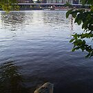 City by the River by estrica