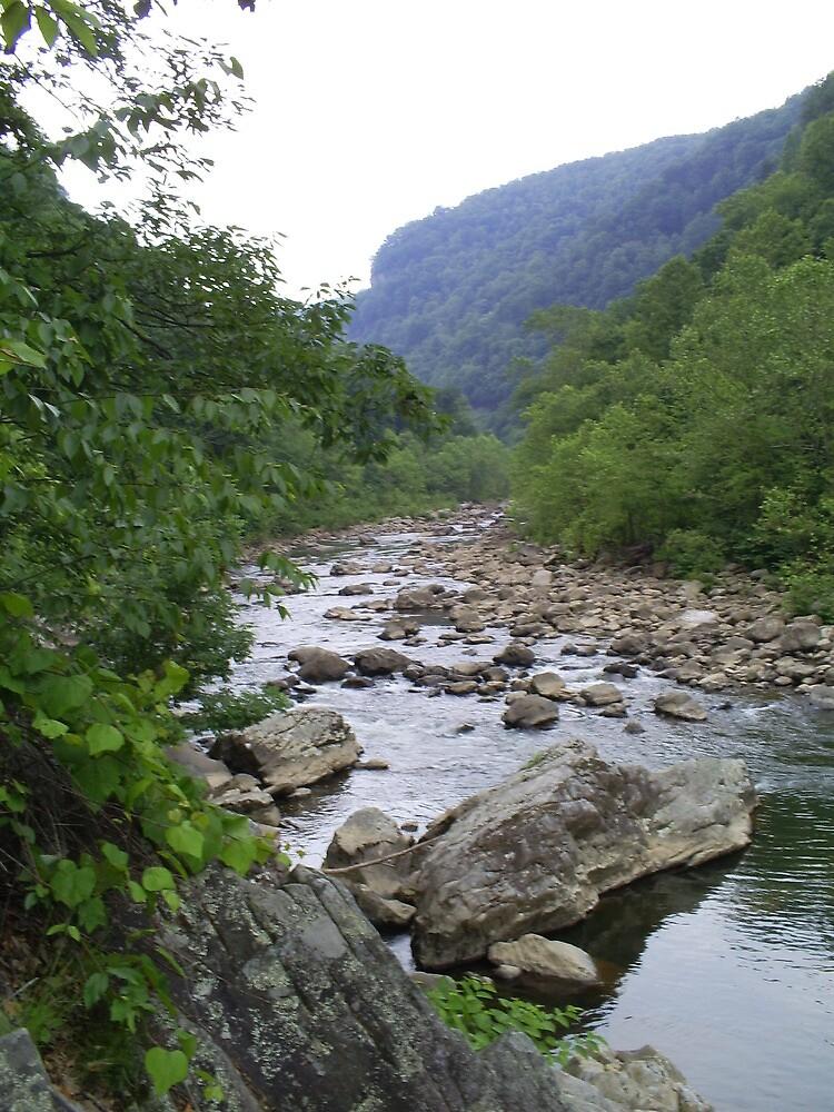 A river runs through it by estrica