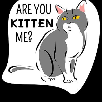 Are You Kitten Me Cute Kitten Pun by DogBoo