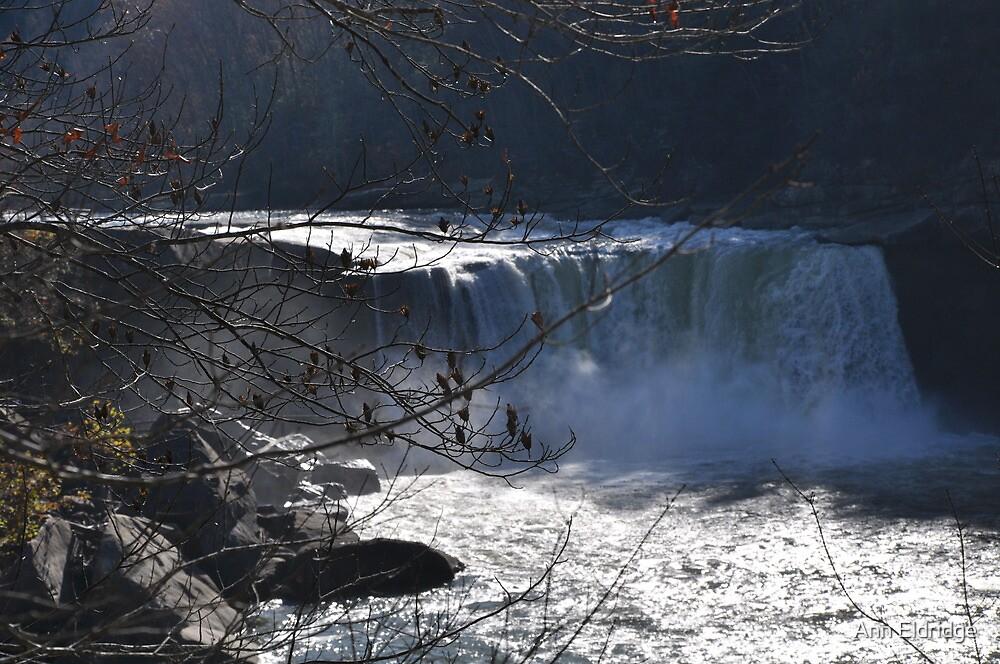 Cumberland Falls in November by Ann Eldridge