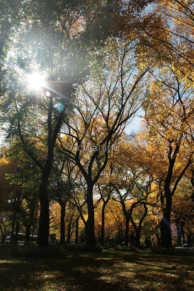Central Park Fall 01 by chianing