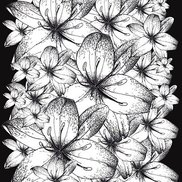 Black and White Lilly Flowers by Surrealist1