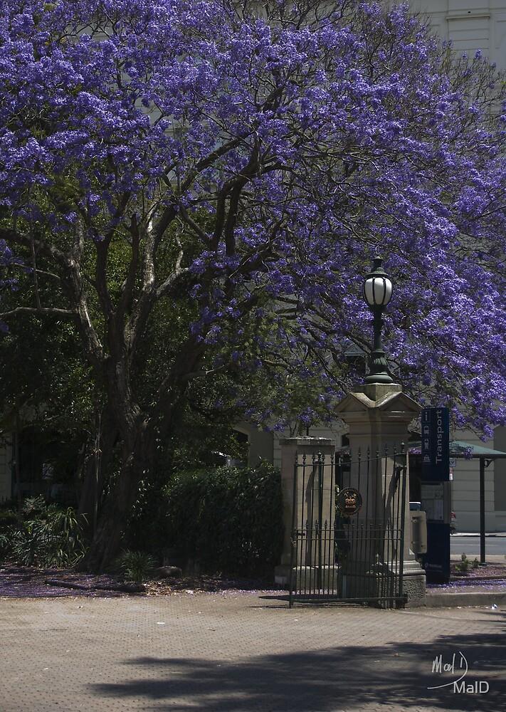 Serene Gate by MalD