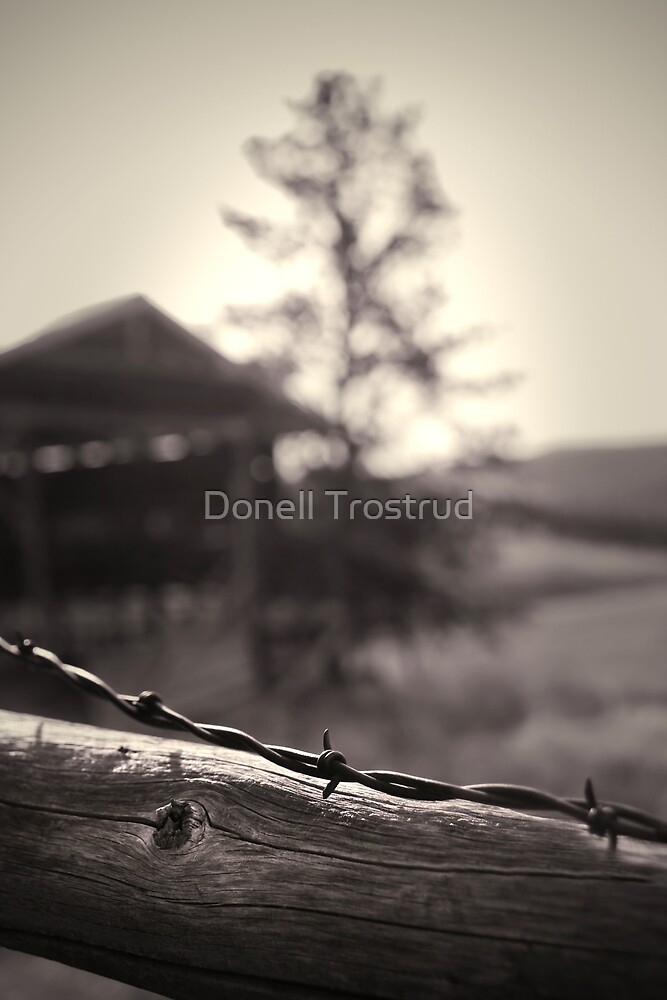 Protected by Donell Trostrud