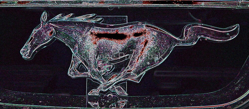 ...lynne's mustang... by Lynne Prestebak