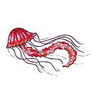The Red Jellyfish  by Hana Ayoob
