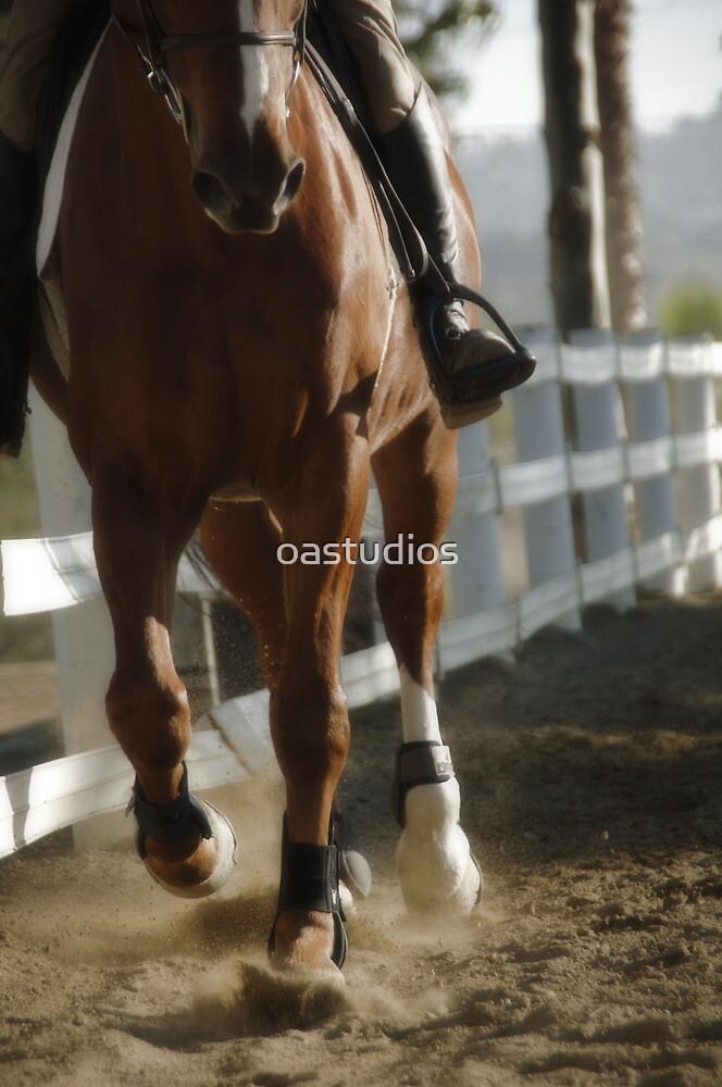 Gallop by oastudios