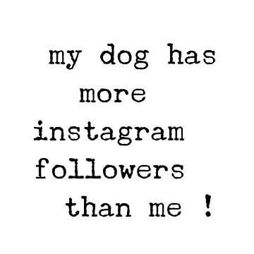 My dog has more instagram followers than me  by CharlyB