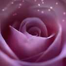 Adorable Soft Pink Rose With Stars by hurmerinta