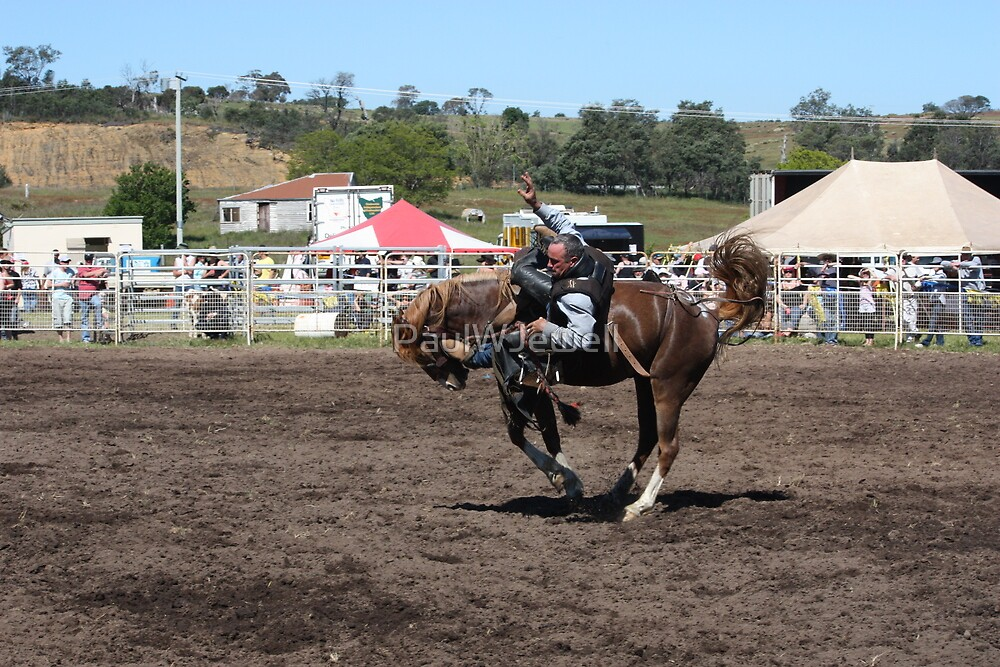 Time to leave, Melton Mowbray Rodeo Tasmania by PaulWJewell