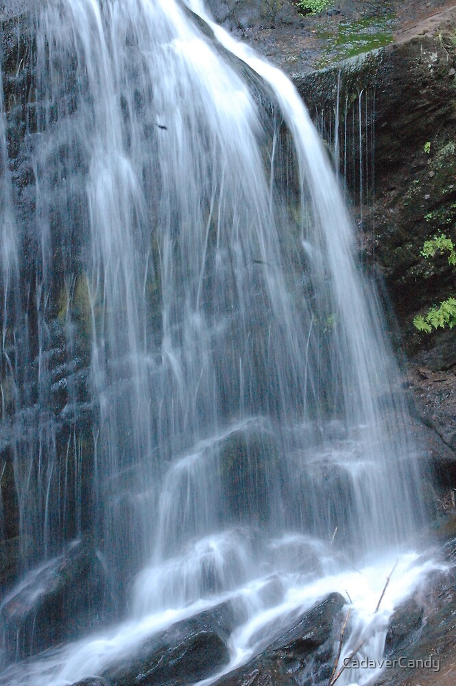 fundy trail waterfall by CadaverCandy